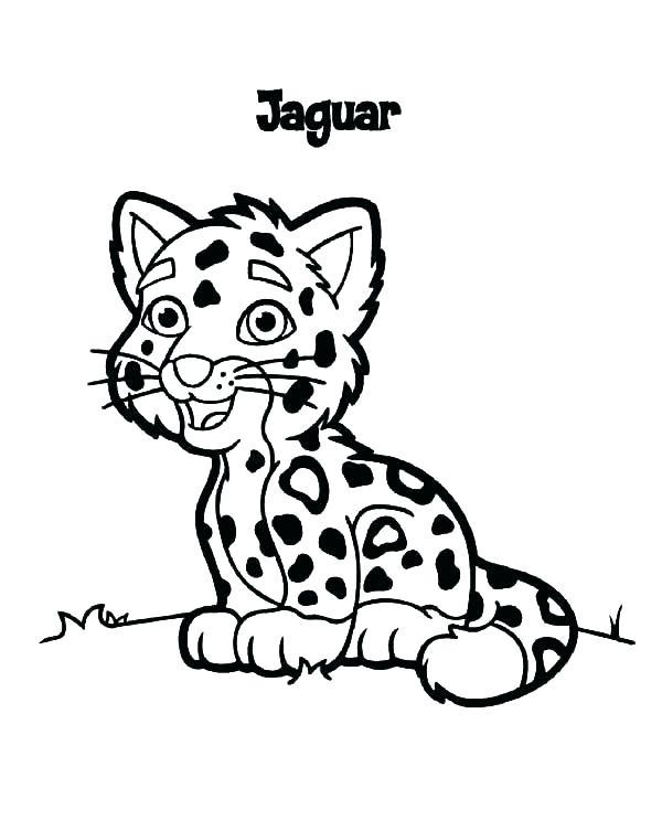 600x743 Jaguar Coloring Pages Best Of Jaguar Coloring Page Images