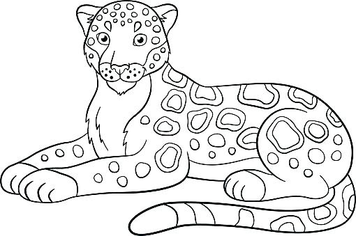 510x339 Jaguar Coloring Pages Jaguar Coloring Pages J Coloring Pages