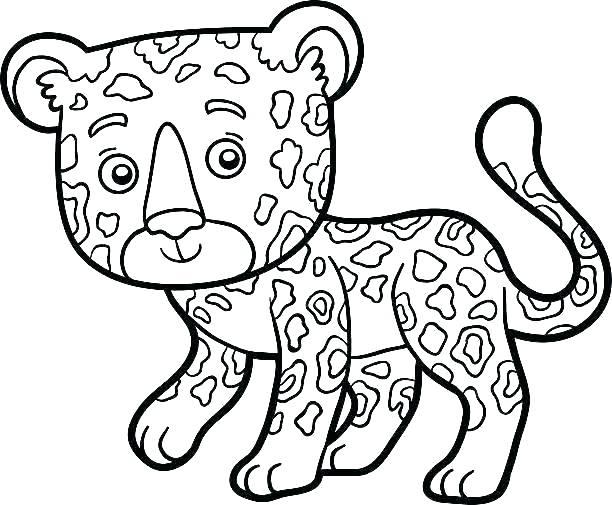 612x505 Jaguar Coloring Pages Jaguar Coloring Pages Throughout Me Free