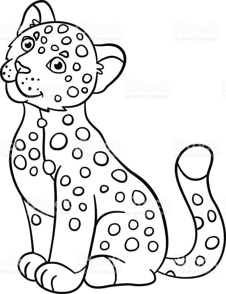 Baby Jaguar Coloring Pages At Getdrawings Free Download