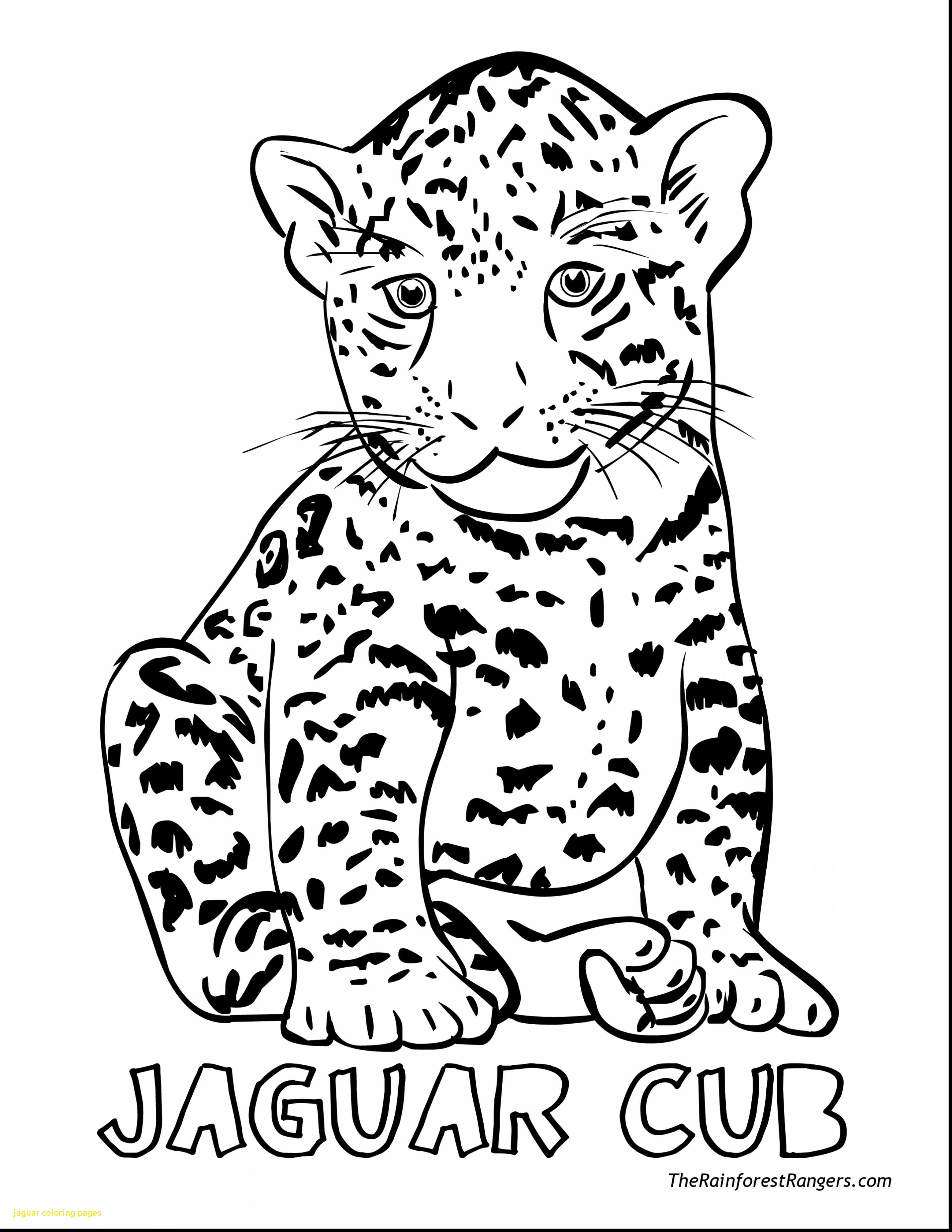 2805x3630 Ba Jaguar Coloring Pages With Fantastic Go Printable In Prepare