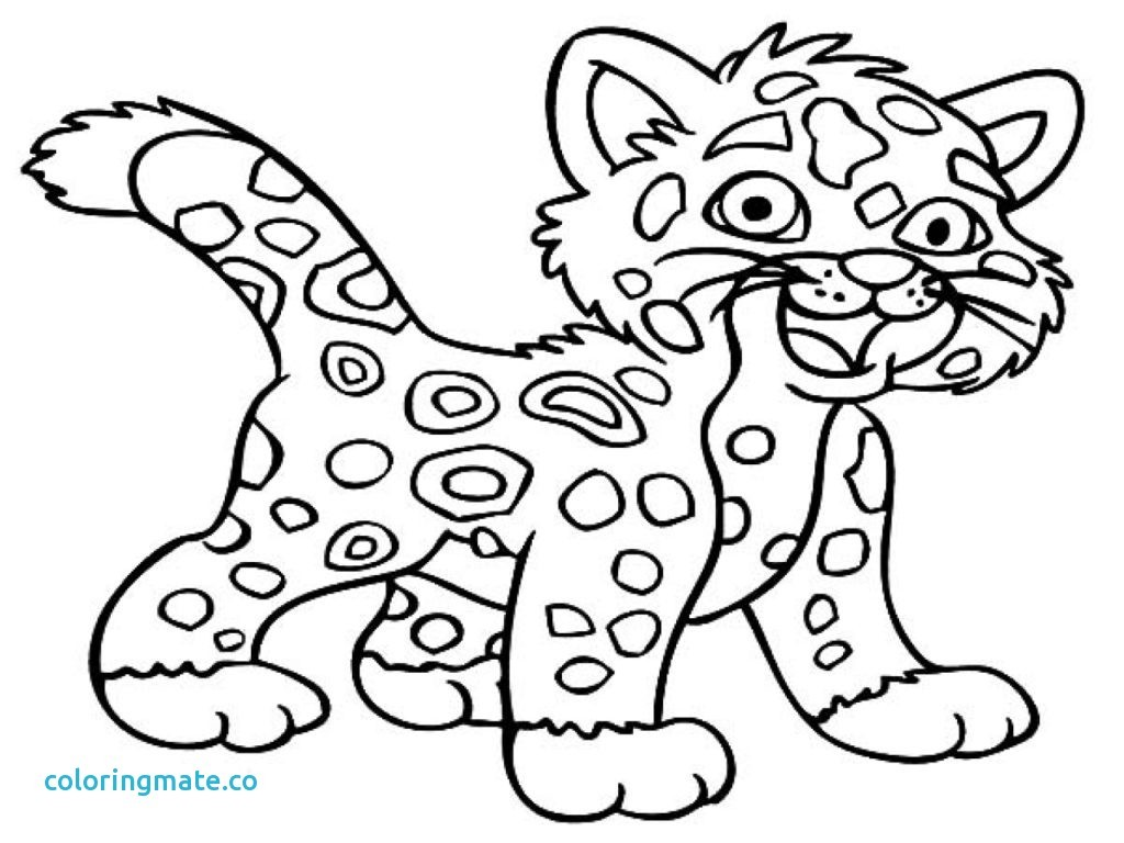 1024x768 Baby Jaguar Coloring Pages Chacalavong Info