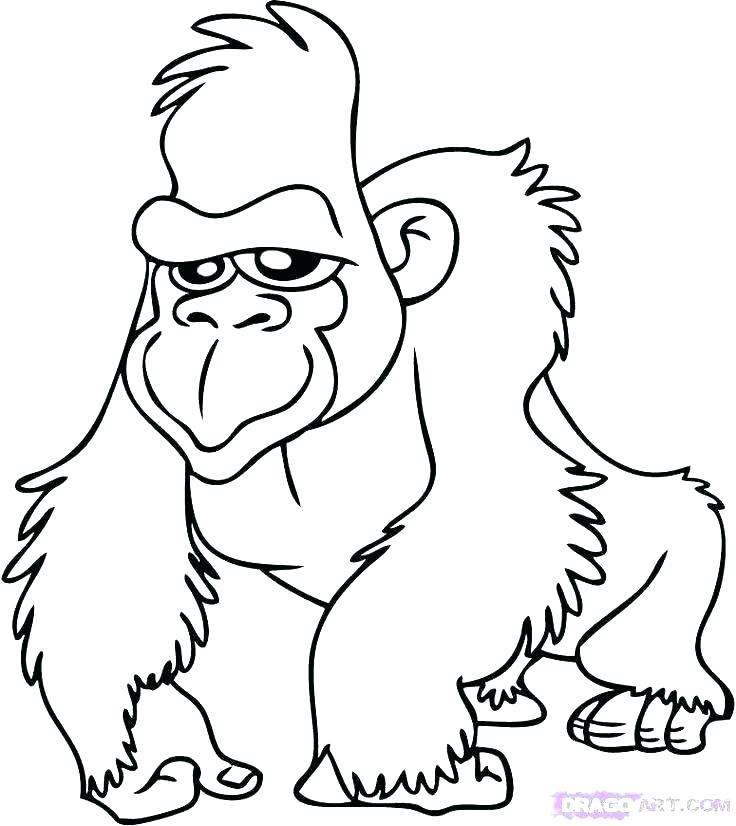736x826 Kids Coloring Videos Kids Coloring Baby Safari Coloring Pages