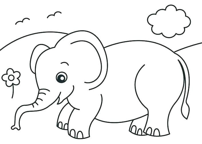 705x505 Baby Jungle Animals Coloring Pages Cute Coloring Pages Of Animals