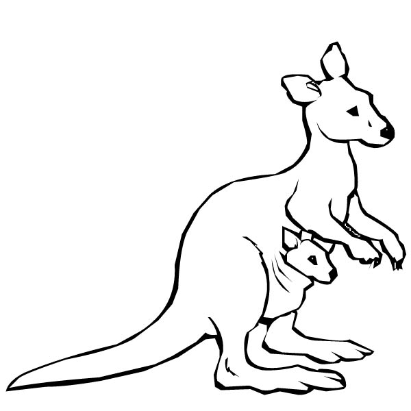 Baby Kangaroo Coloring Page