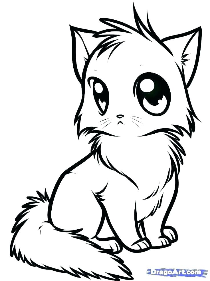 Baby Kitten Coloring Pages At Getdrawings Free Download