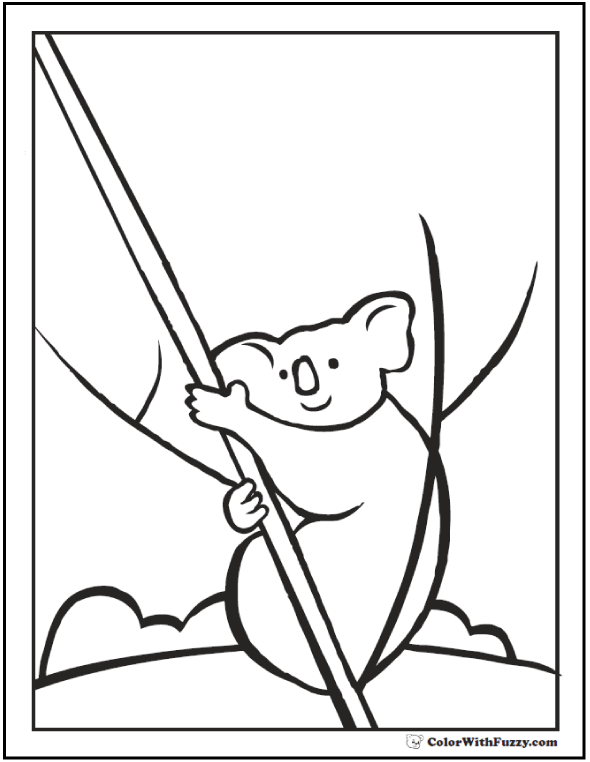 590x762 Koala Coloring Pages For Kids Hop A Ride With A Koala!