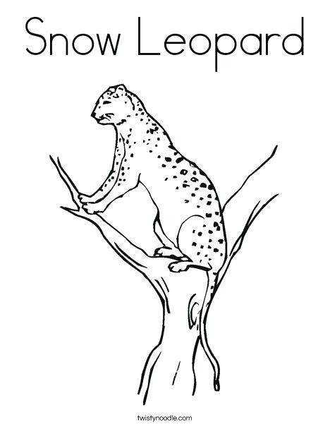 468x605 Snow Leopard Color Picker Leopard Coloring Page Snow Leopard Color