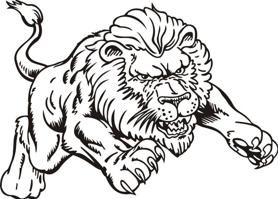 900x645 Lion Coloring Page