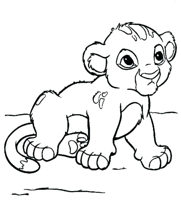 600x666 Lion Drawing For Coloring Baby Lion Coloring Pages Coloring Pages