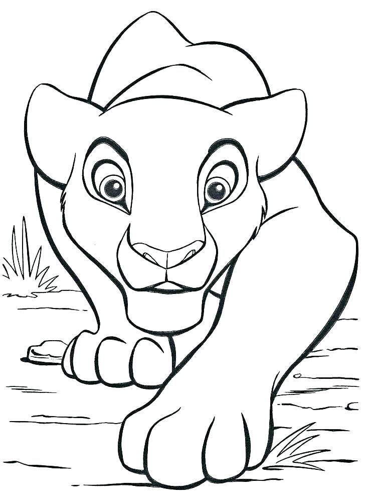 736x1003 Baby Lion Coloring Pages