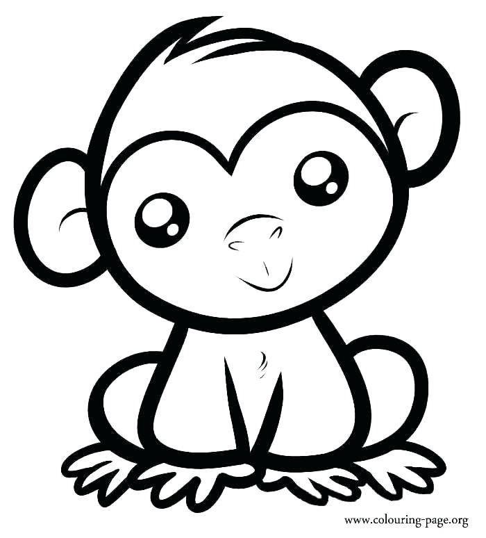 700x774 Coloring Pages Of Baby Monkeys
