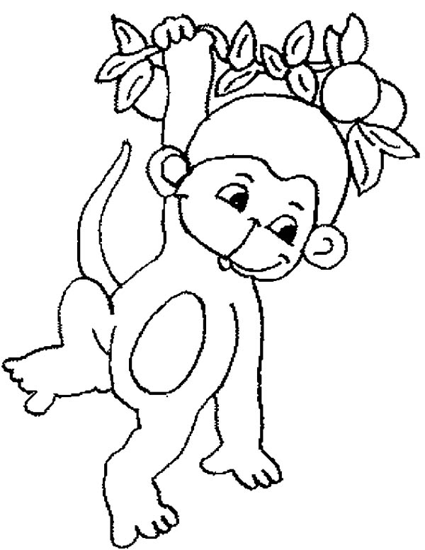 600x777 Monkey, Cute Baby Monkey Hanging On Tree Coloring Page For Kids