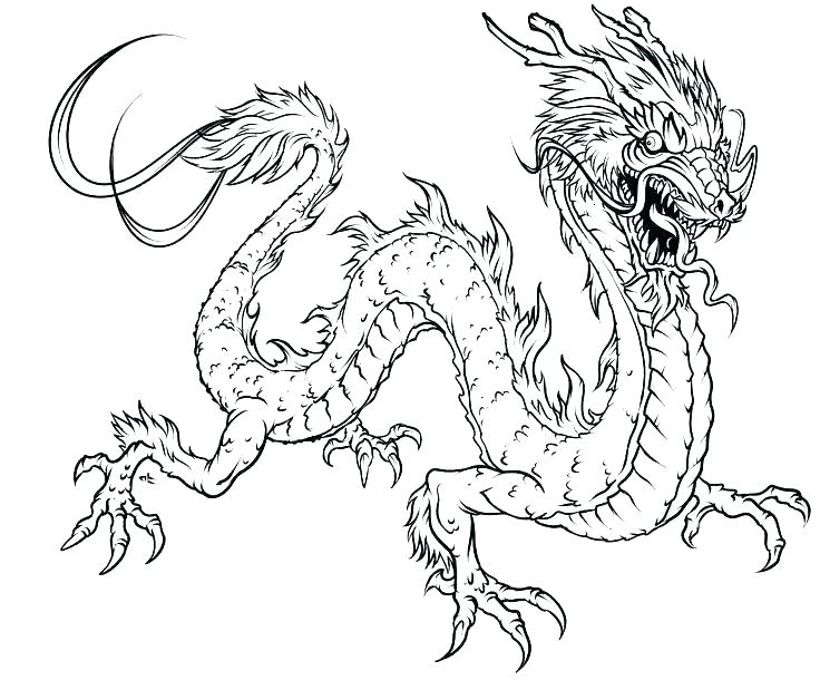 736x610 Baby Dragon Coloring Pages New Year Dragon Coloring Page Free