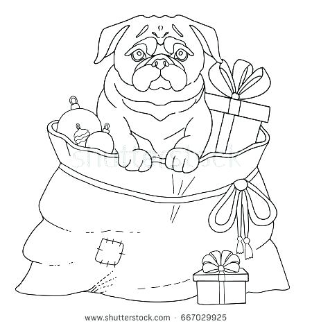 450x470 Pug Coloring Pages Kids Coloring Get The Coloring Page Pug Pug