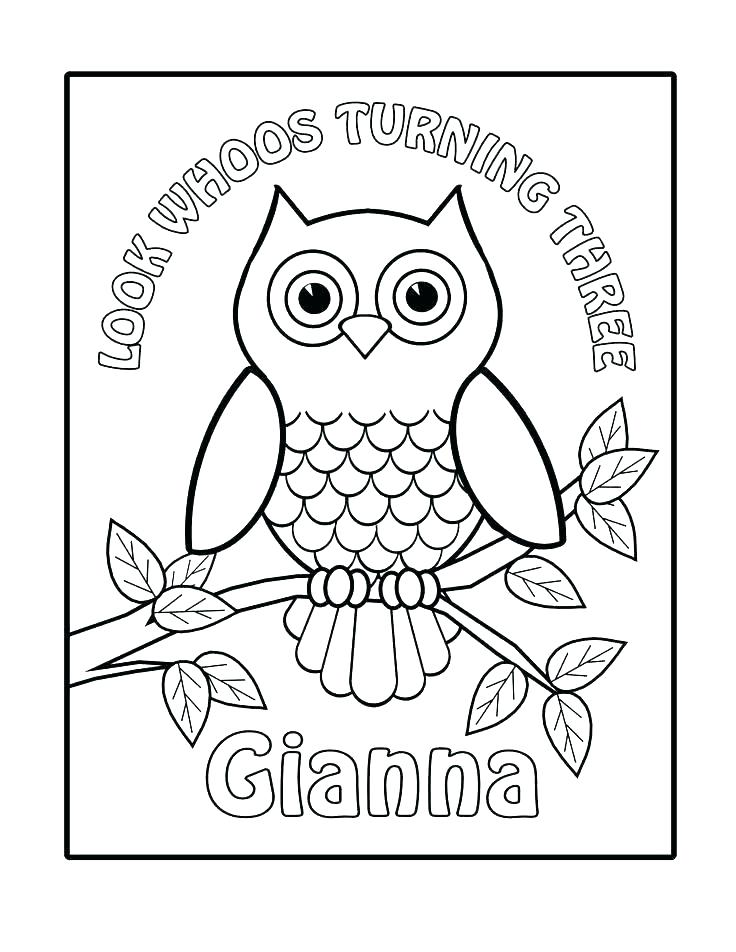 736x952 Owl Coloring Pages For Kids Free Printable Owl Coloring Pages Owl