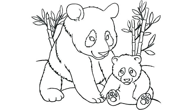720x419 Baby Panda Coloring Sheets Pages Of Pandas