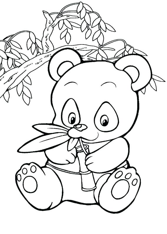 567x794 Baby Panda Coloring Pages