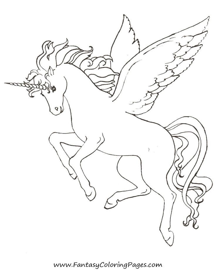 736x920 Baby Pegasus Coloring Pages