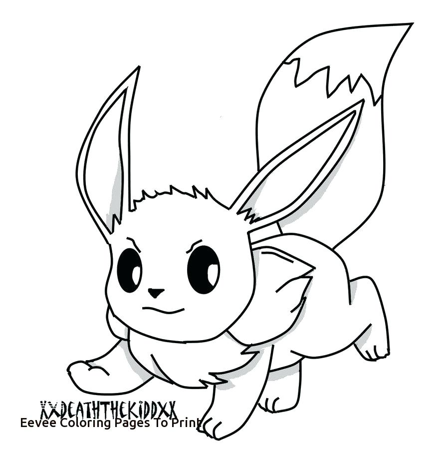 884x903 Value Eevee Coloring Pages Baby Pokemon Printable