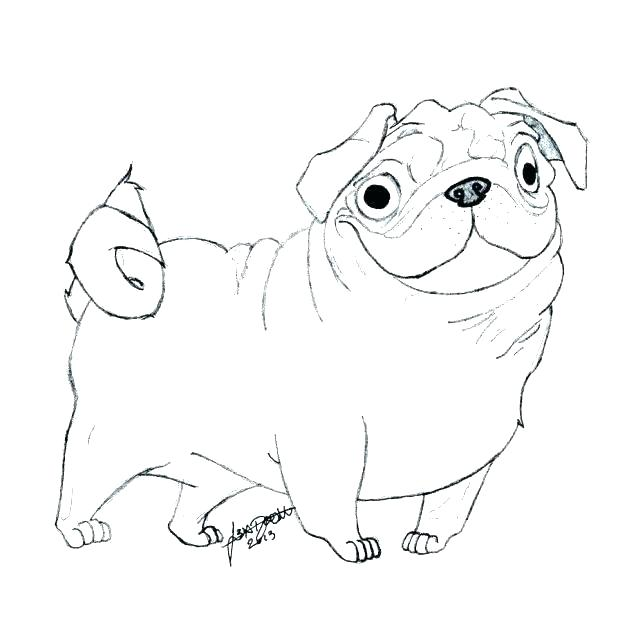Baby Pug Coloring Pages at GetDrawings | Free download