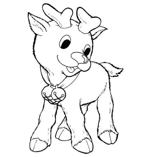 600x667 Coloring Pages Reindeer Cute Coloring Page Pages Reindeer