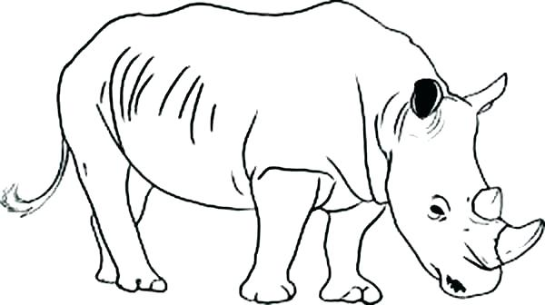 600x336 Rhino Coloring Page Rhino Coloring Pages Rhino Coloring Page Wild