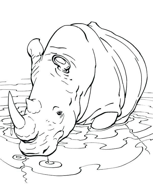 600x763 Rhino Coloring Page Rhinoceros Coloring Pages Printable