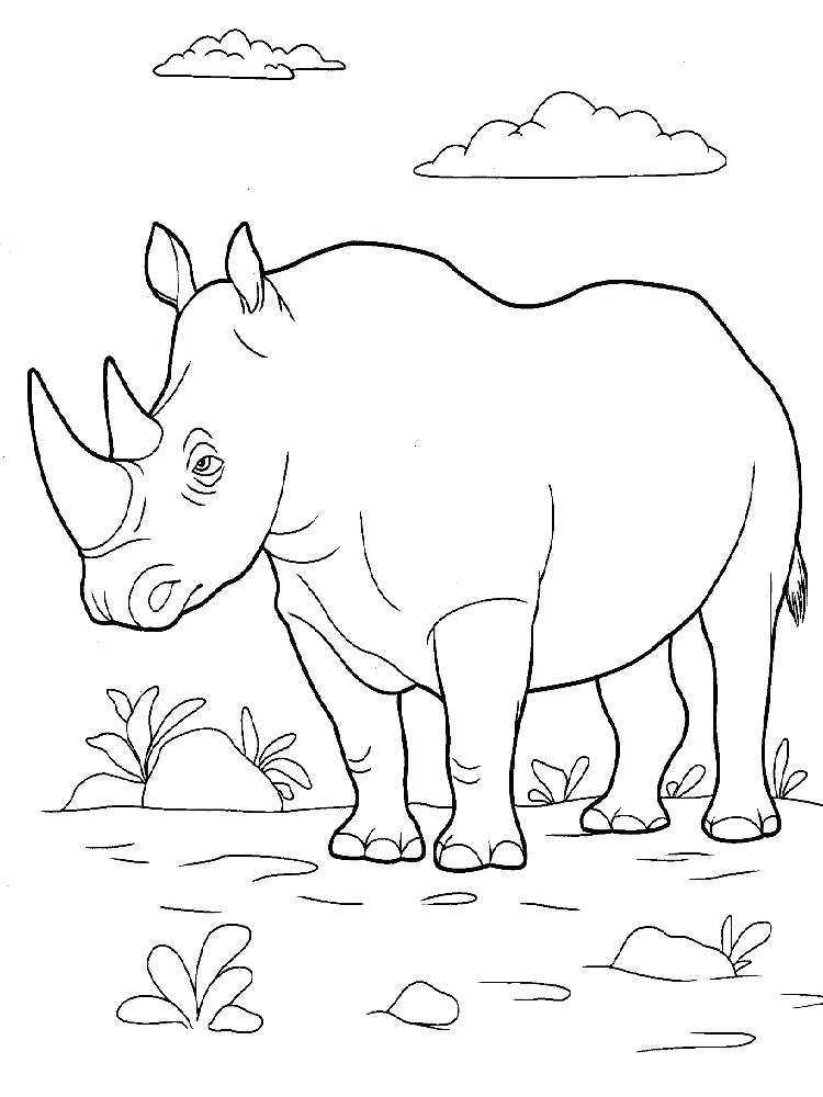 750x1000 Rhino Coloring Pages Download And Print Rhino Coloring Pages Rhino