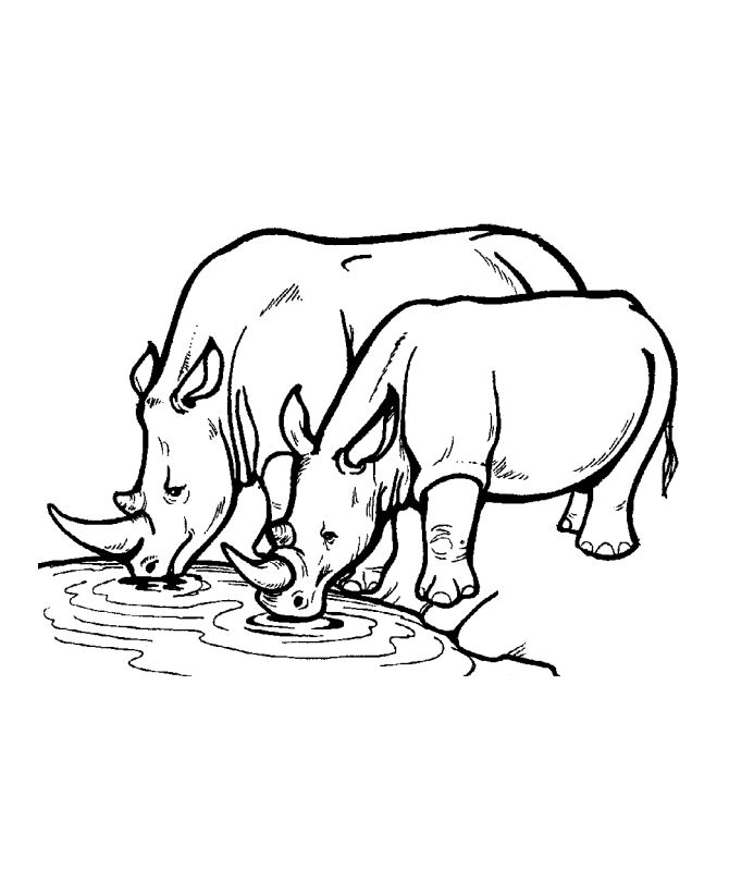 670x820 Rhino Clipart Coloring Page