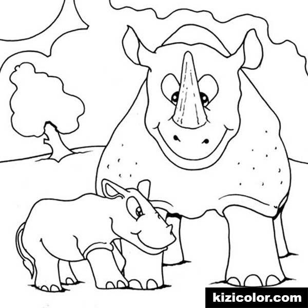 600x600 Baby Rhino Love His Mother