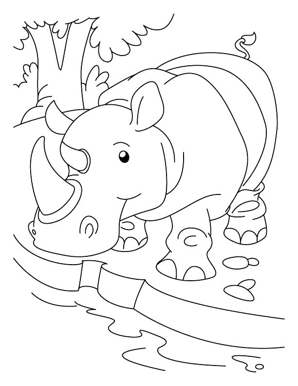 612x792 Rhinoceros Coloring Page Parts Of Rhino Picture Coloring Pages