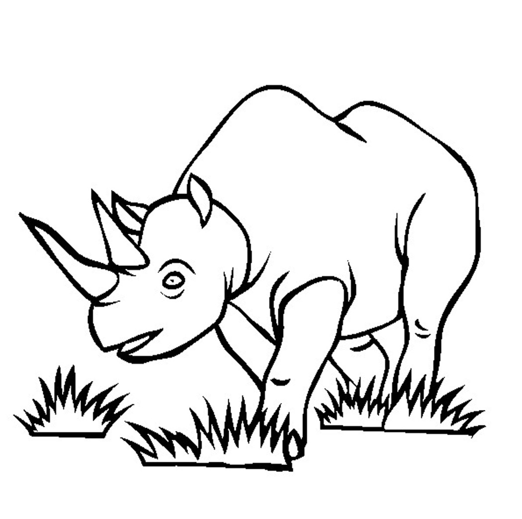1050x1044 Zentangle Rhino Coloring Page Free Printable Pages Fancy