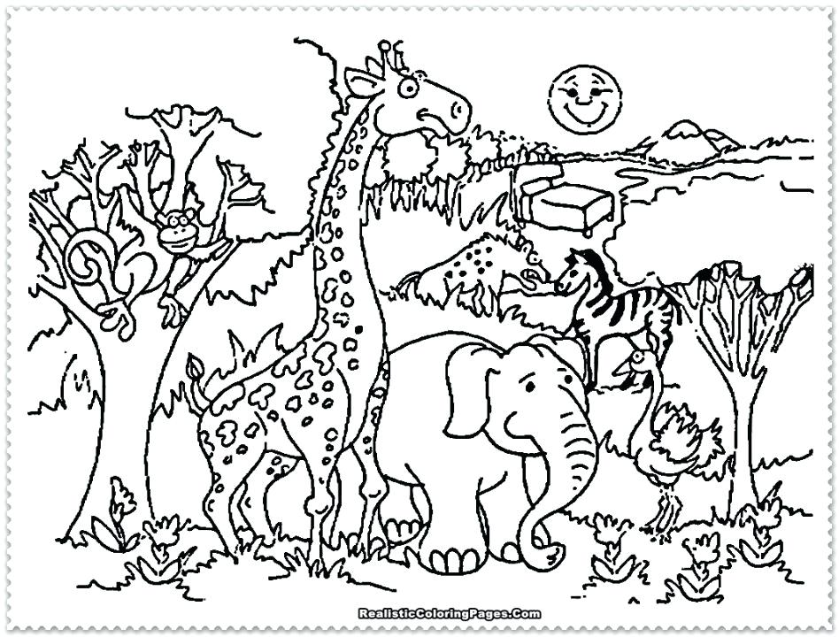 Baby Safari Animals Coloring Pages at GetDrawings.com | Free for ...