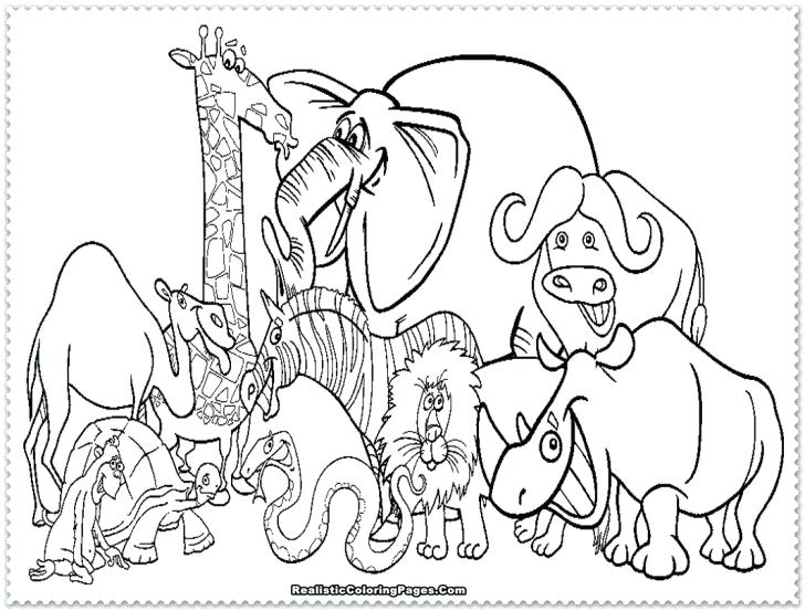 728x553 Safari Coloring Page Jungle Animal Coloring Pages Printable