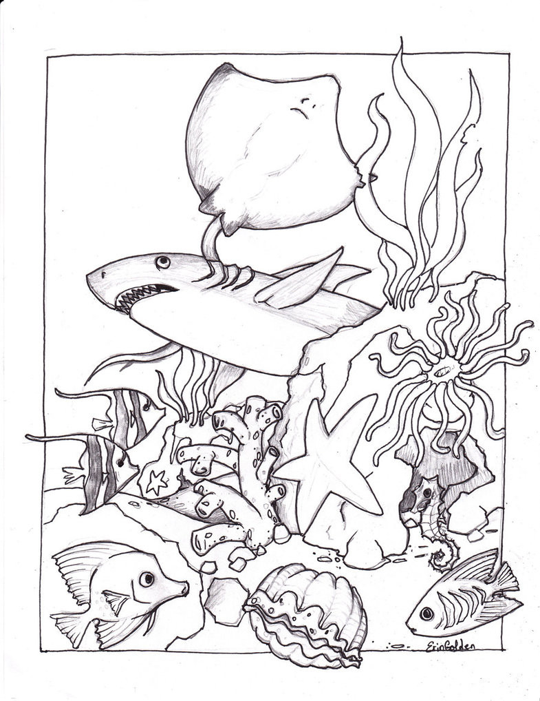 785x1018 Imagination Ocean Animal Coloring Pages Baby S