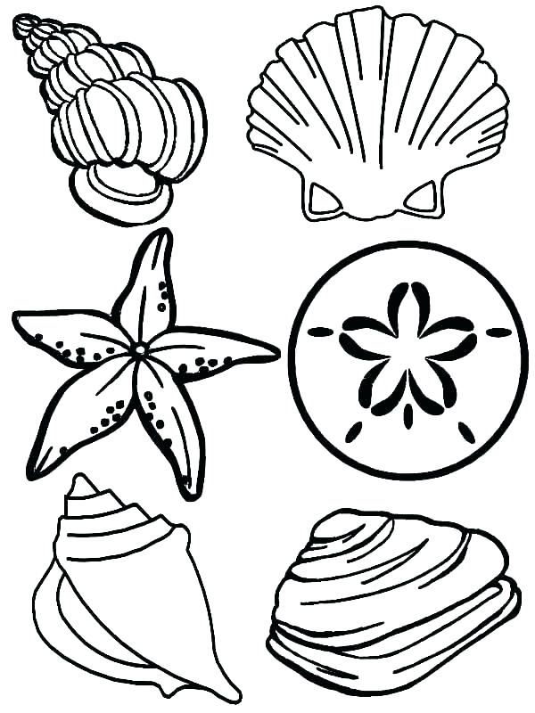600x800 Sea Animals Coloring Pages Coloring Pages Sea Animals Ocean