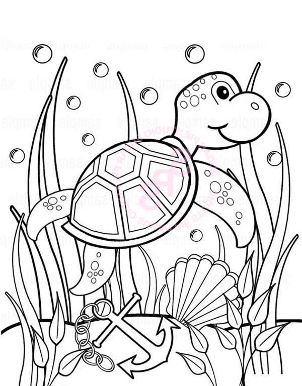 600x768 Baby Sea Turtle Play Between Seaweed Free Coloring Sheet