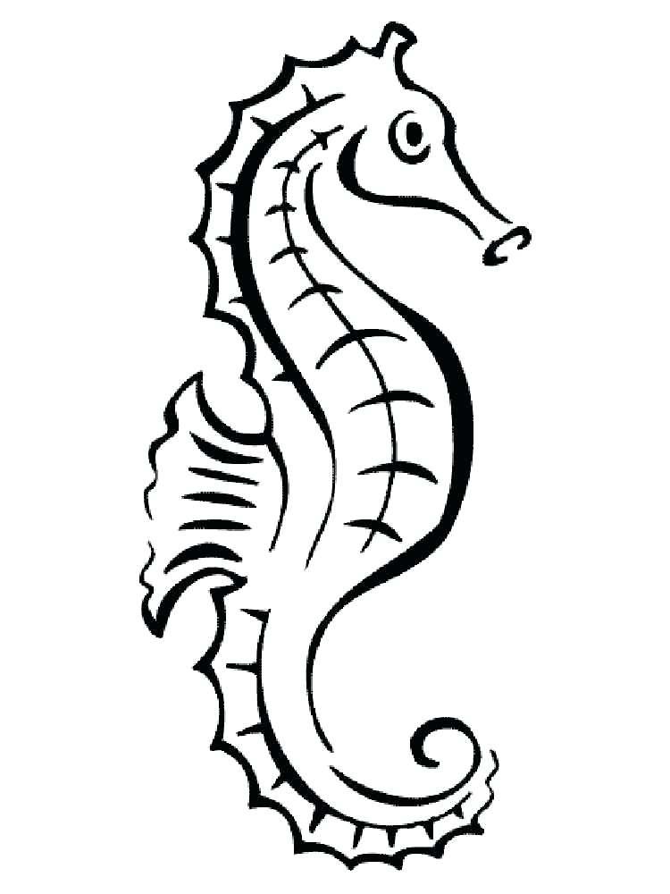 750x1000 Sea Horse Coloring Page Seahorse Coloring Pages Baby Seahorse