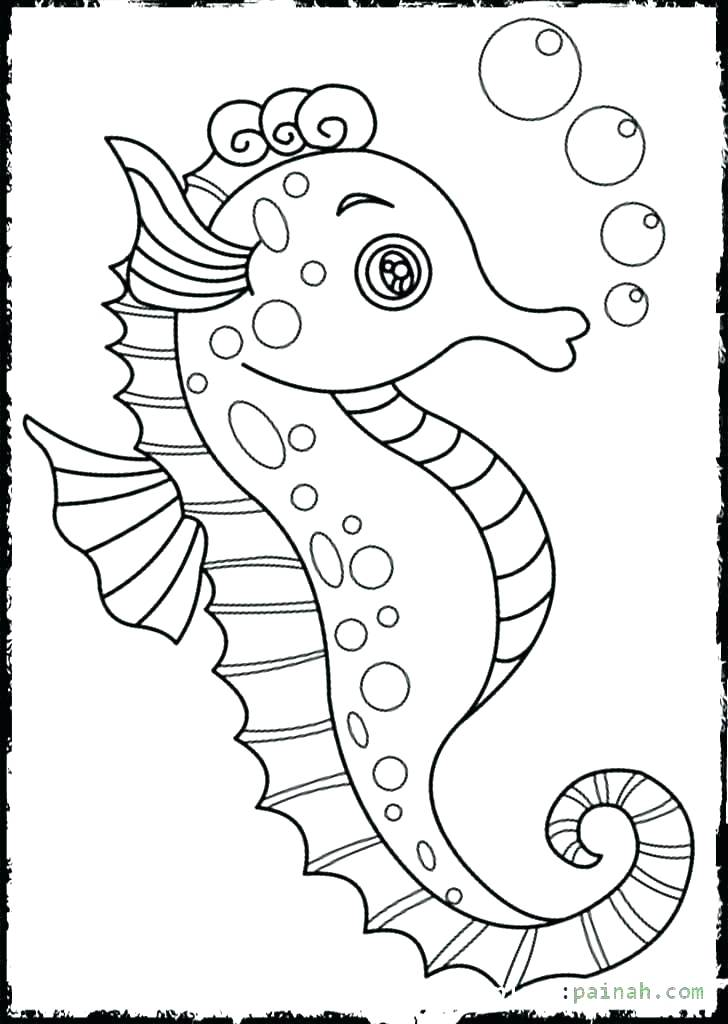 728x1024 Seahorse Coloring Page Baby Seahorse Coloring Pages Mister Cute