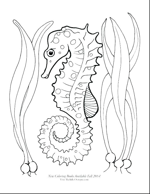 618x800 Very Hungry Caterpillar Coloring Pages The Very Hungry Caterpillar