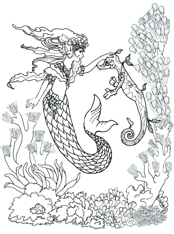 Baby Seahorse Coloring Pages At Getdrawings Com Free For Personal