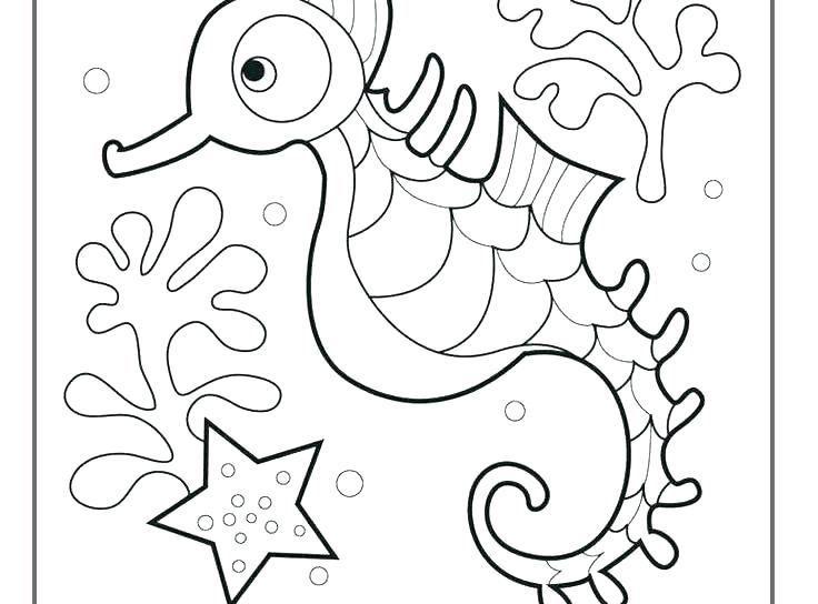 736x544 Big Rounded Eye Seahorse Coloring Page Big Rounded Eye Seahorse