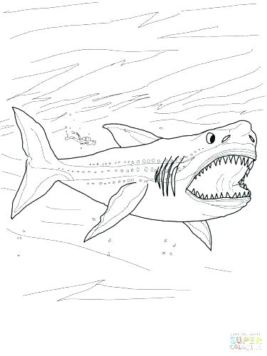 375x500 Free Shark Coloring Pages Free Printable Shark Coloring Pages