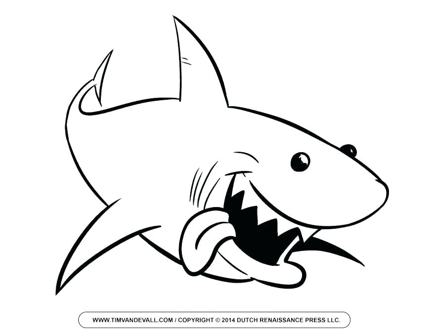 878x678 Tiger Shark Coloring Pages Prev Next Baby Great White Shark Tiger