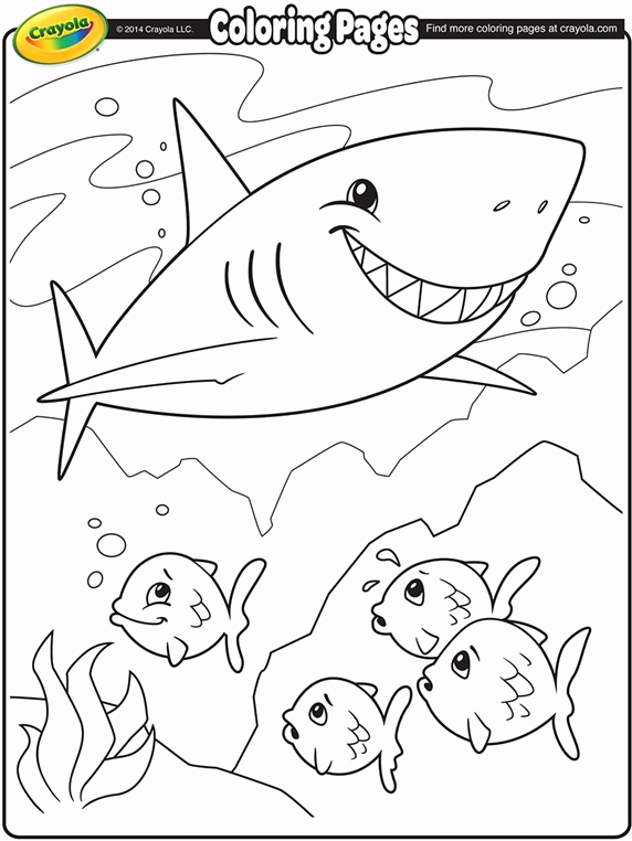 Baby Shark Coloring Pages at GetDrawings com Free for