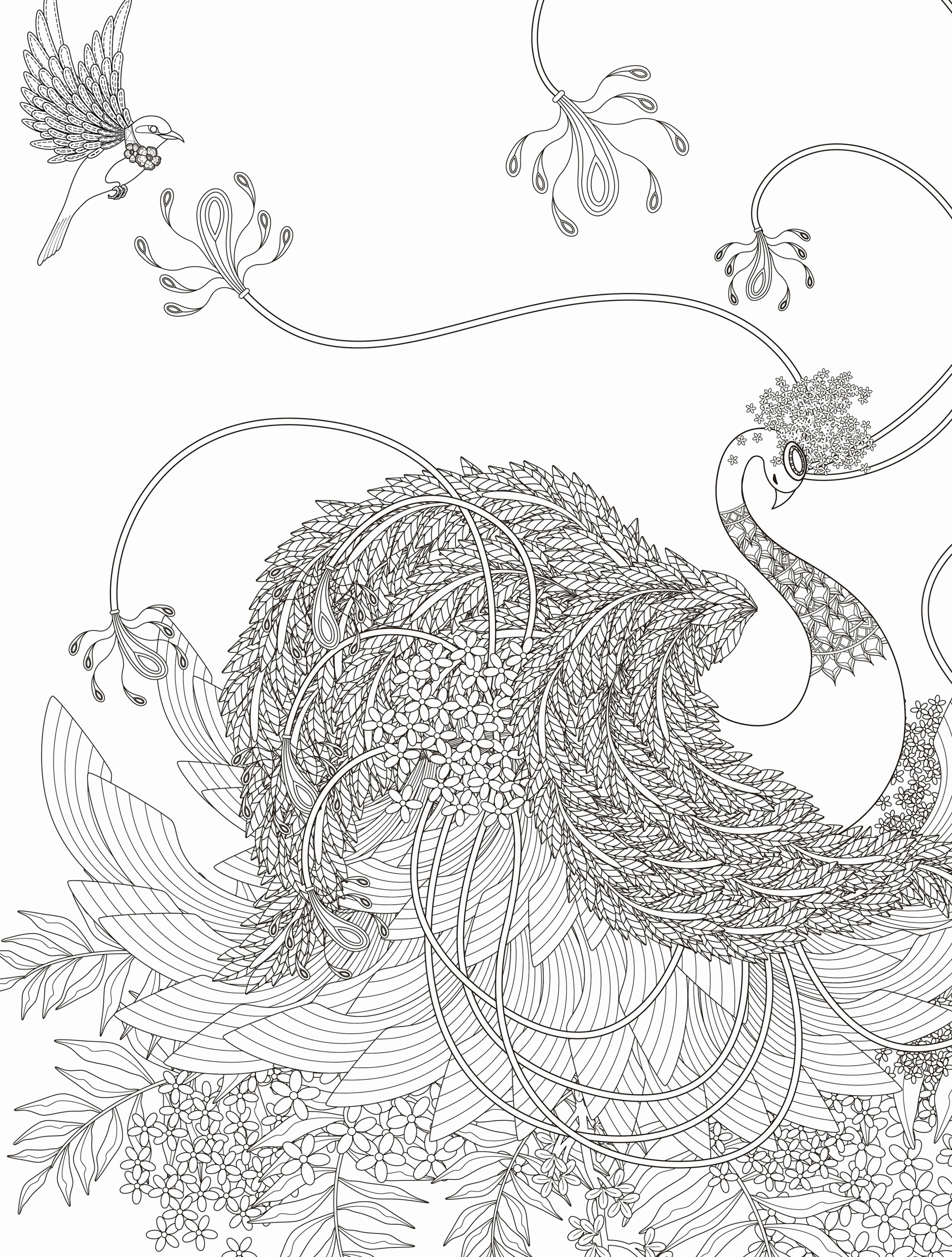 2500x3300 Baby Tiger Coloring Pages Lovely Baby Shark Coloring Page Shark
