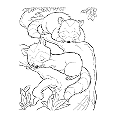 Baby Sleeping Coloring Pages