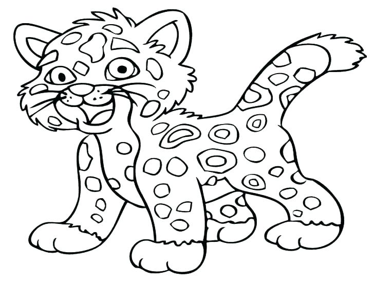 728x546 Snow Leopard Coloring Pages Baby Leopard Colouring Pages Snow