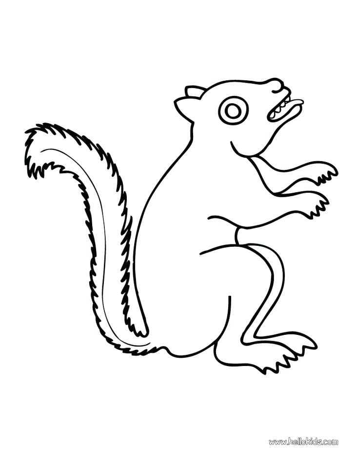 728x941 Coloring Pages Of Squirrels Drawing A Squirrel Coloring Page